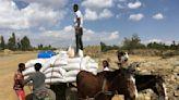 'Extreme urgent need': Starvation haunts Ethiopia's Tigray