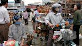 WHO urges halt to sale of live wild animals in markets