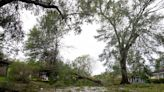 Hurricane Laura live coverage: Trump to visit damaged areas; at least 6 dead after 'extensive' damage to Louisiana