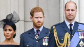 Prince Harry's Book To Reveal What He Really Thinks About Prince William? - Daily Soap Dish