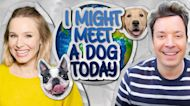 """""""I Might Meet a Dog Today"""" with Kristen Bell"""
