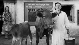 A film student uncovered thousands of haunting vintage photos of village life in the Soviet Union. Here are the best ones.
