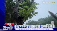 雨彈狂炸!岡山多處淹 汽.機車泡水中 左營路樹倒塌