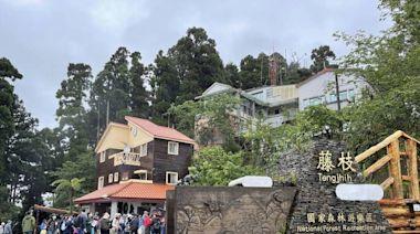 藤枝國家森林遊樂區一票難求 部落、業者喊增額