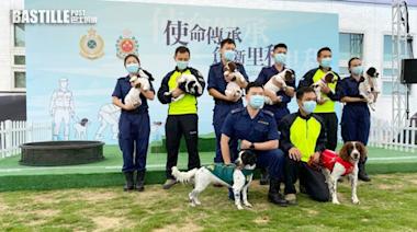 海關消防處成功孕育6犬隻 將訓練成搜查犬及搜救犬 | 社會事