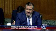 Cruz, law professor debate Texas voter ID law