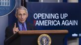 Fauci says US could be 'back to normal' by next Mother's Day if most people are fully vaccinated