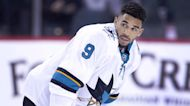 NHL star accused of tanking games to pay off gambling debts