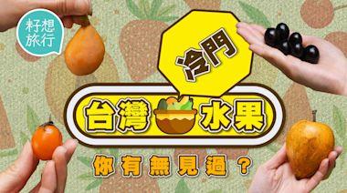 台灣水果|推介4種當造冷門水果 樹葡萄係植物界威而鋼 矜貴枇杷香港有得買 | 蘋果日報