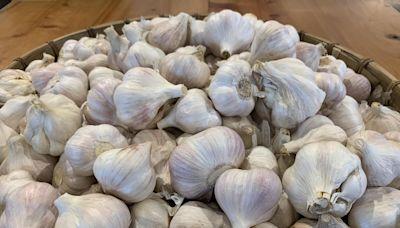 保護國內產業 農委會擬調高大蒜、紅豆進口配額外關稅