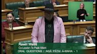 Maori Co-Leader Ejected From New Zealand Parliament After Performing Haka