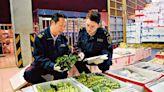 保質保量/上半年粵供港食品14萬噸 大增30%