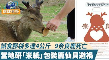 【日本奈良】誤食膠袋多達4公斤 9奈良鹿死亡 當地研「米紙」包裝鹿仙貝避禍 | BusinessFocus