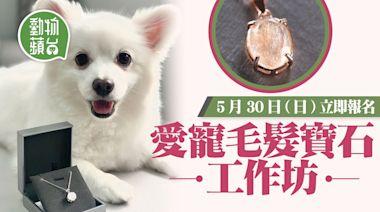 DIY工作坊|親手製作寵物毛髮寶石吊墜 5月優惠價新場次 「戴」着寵物周圍去 | 蘋果日報