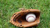球賽運動中最「尊貴」的棒球