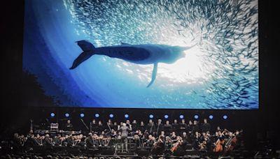 為台達50獻聲 李家維教授音樂會上將解說BBC史詩級生態紀錄片