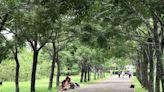 高屏森林遊樂區入園人數將放寬 山屋仍不開放