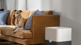 RS Recommends: These Are the Best Air Purifiers for Pet Owners