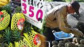 釋迦、蓮霧能像鳳梨逆轉嗎?日本記者:鳳梨熱潮下,你不知道的百年台灣移民史-風傳媒