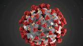 路透:印尼逾2千人死於冠狀病毒疾病症狀未列官方統計