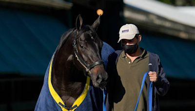 It could be weeks before we learn Medina Spirit's Kentucky Derby fate. Here's why.