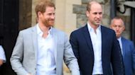 Princes William and Harry to reunite for the 1st time in year at royal funeral