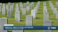 Veteran's mental health and suicide