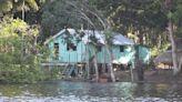 不只是大火 科學家呼籲:跨國合作保護亞馬遜雨林