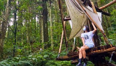桃園景點|看了25年也不會膩 東眼山森林志工老師推薦大家「玩」森林遊樂區 - 工商時報