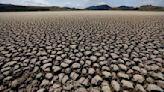 Letter: Forget science-deniers, battle climate change now