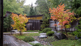 `Bringing nature in': Japanese gardens speak to the moment