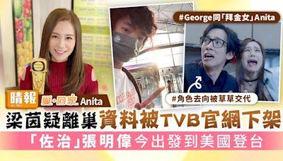 《愛回家》Anita|梁茵疑離巢資料被TVB官網下架 「佐治」 張明偉今出發到美國登台 - 晴報 - 娛樂 - 中港台