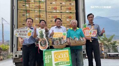 金鑽鳳梨打頭陣 一周一貨櫃外銷日本