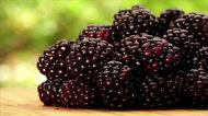 Bad News for Lovers of Black Raspberries—There's a Shortage This Summer