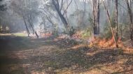 Firefighters Conduct Hazard Reduction Burning Months After Record Bushfires Ravaged Australia