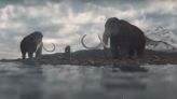 Study Says Climate Change Killed Off Woolly Mammoths, Not Humans
