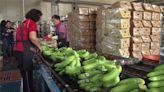 高雄日供30噸蔬果北上 北農群聚案高雄急匡列125人 -台視新聞網