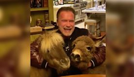 Schwarzenegger social distancing with pony and donkey