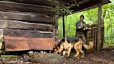 Cadaver Dogs: How Canine Noses Help Find Dead Bodies