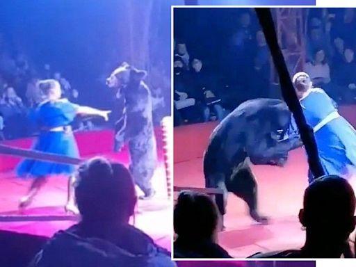 公熊在老公面前硬上人妻 「嫉妒」她懷上別人的孩子!驚悚影片曝光 | 蘋果新聞網 | 蘋果日報
