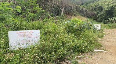 糞坑處大欖郊園生態寶庫 | 蘋果日報