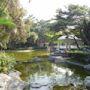 通州街公園