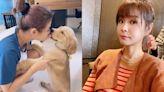 李燕與愛犬「鼻碰鼻」挨轟:疫情升溫會害到狗! 大器回應網讚爆