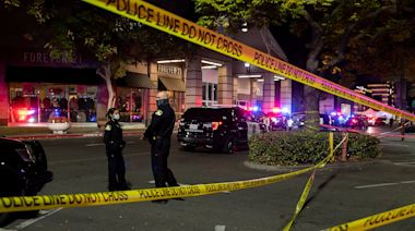 17-Year-Old and 19-Year-Old Dead After Mall Shooting on Black Friday in California
