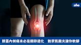 膝蓋內側痛未必是關節退化 鵝掌肌腱炎讓你軟腳   蕃新聞