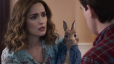 Peter Rabbit 2 becomes second movie to be delayed over coronavirus fears
