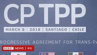 中國申請加入CPTPP 北京為何要「偏向虎山行」