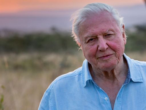 Sir David Attenborough 'quits' Instagram after just two months