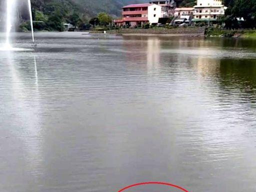 紅龍報喜!百年南投麒麟潭 遇乾旱依舊滿水位