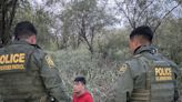 EXCLUSIVE VIDEO: Border Patrol agents sleuth to find hiding migrants in South Texas brush